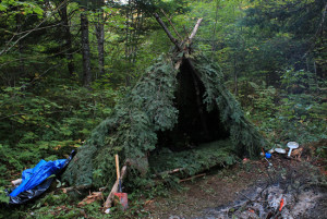 Build-a-Shelter