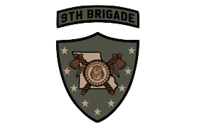 3/9 D Company Unit Patch